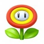 Fire Flower.jpg