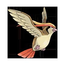 Pidgeot Image