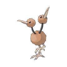 Doduo Image