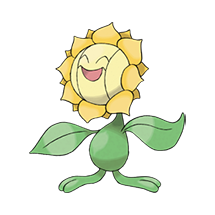 Sunflora Image