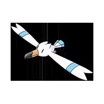 Wingull Image