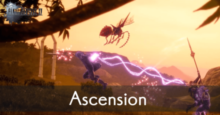 Ascension Banner