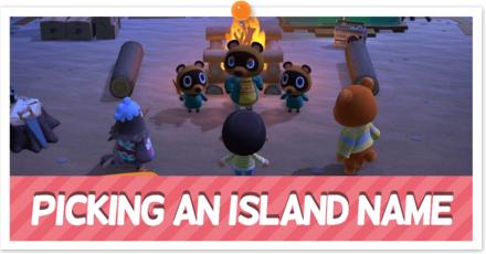 Picking an Island