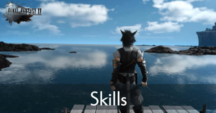 Skills Banner (1).png
