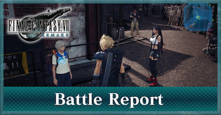 Battle Report Banner.png