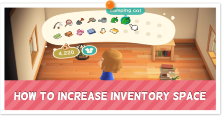 How to Increase Inventory Space - Partial.png