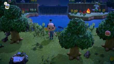 Normal Island 1.jpeg