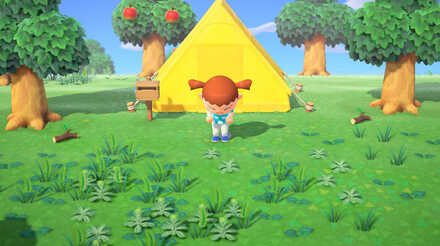 Best House And Tent Location How To Move Your House Acnh Animal Crossing New Horizons Switch Game8
