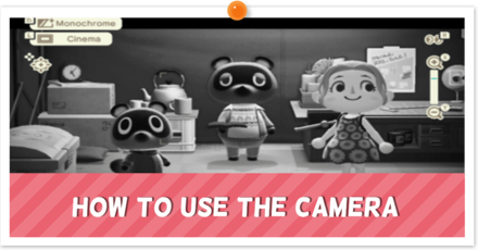 How to Use Camera.png