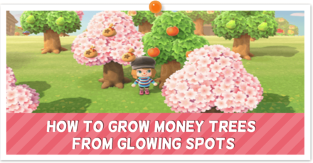 How to Grow Money Trees from Glowing Spots.png