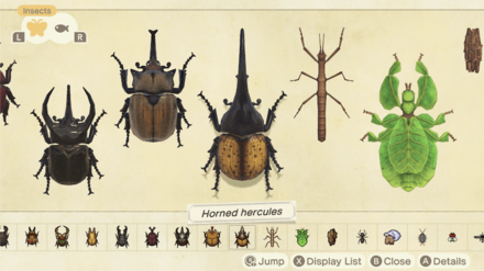 All Bugs in Animal Crossing New Horizons (ACNH)