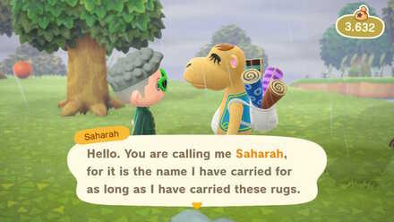 Saharah Rugs.jpg