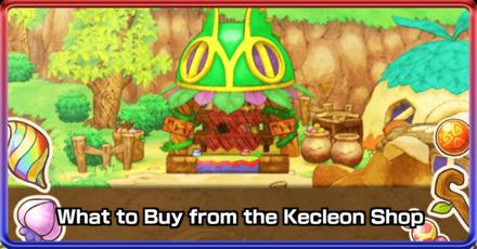 Kecleon Shop Banner.png