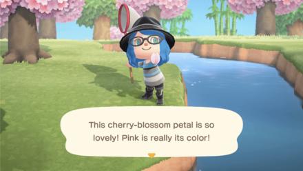 Caught a Cherry-Blossom Petal