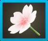 Cherry-Blossom Umbrella Icon
