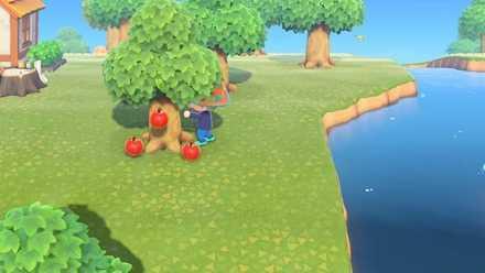 Shake Fruit Trees.jpeg