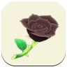 Black Rose Icon