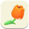 Orange Tulip Icon