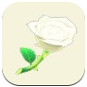 White Rose Icon
