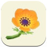 Orange Windflower Icon