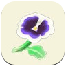 White Pansy Icon