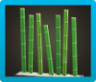 Bamboo Partition Icon
