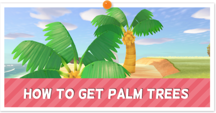 palm trees partial.png