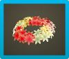 Hyacinth Crown Icon