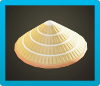 Bamboo Hat Image
