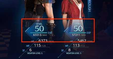 Level Cap.jpg