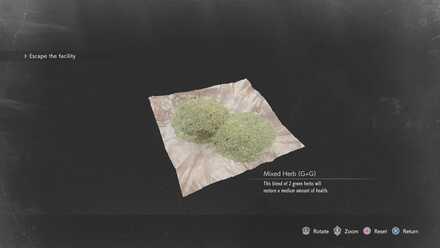 G + G Herb