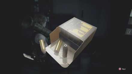 Magnum Ammo.jpg