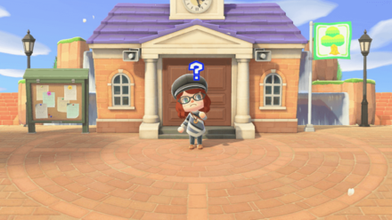 What can you do in Animal Crossing New Horizons