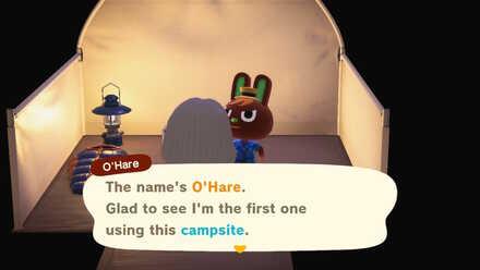 Campsite visitor.jpg