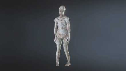 Pale Head model.jpg