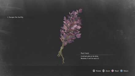 Red Herb.jpg