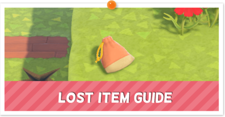 Lost Item Partial.png