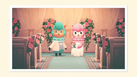 Wedding Season Photo