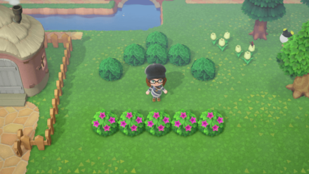 Animal Crossing New Horizons (ACNH) Bushes and Shrubs