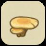 Flat Mushroom Image