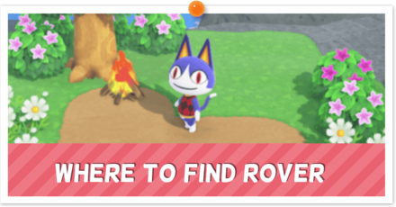 Rover partial.png