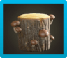 Mush Log Icon