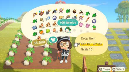 Eat 10 turnips.jpg