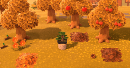 Trees Bounty header.png