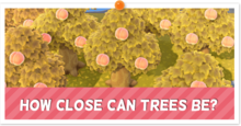 How Close Can You Plant Trees partial.png