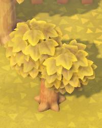 03 Medium Young Tree.png