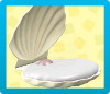 Shell Bed Icon