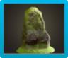Mossy Garden Rock Image