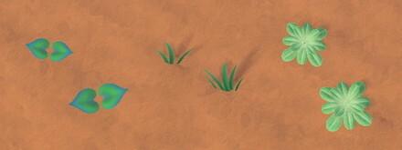 Weeds in Summer Stage 1.jpg