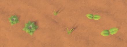 Weeds in Autumn Stage 1.jpg